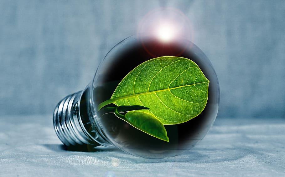 Sicurezza e Superbonus: efficientamento energetico e protezione al 110%